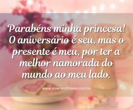 Parabéns minha princesa! O aniversário é seu, mas o presente é meu, por ter a melhor namorada do mundo ao meu lado.