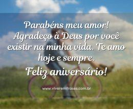 Parabéns meu amor! Agradeço à Deus por você existir na minha vida. Te amo hoje e sempre. Feliz aniversário!