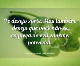 Te desejo sorte. Mas também desejo que você não se esqueça do seu enorme potencial.