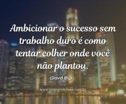 Ambicionar o sucesso sem trabalho duro é como tentar colher onde você não plantou. David Bly